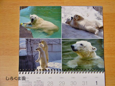 Calendar_09