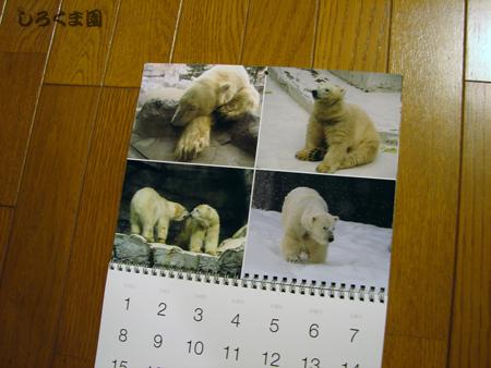 Calendar_16
