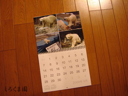 Calendar_19